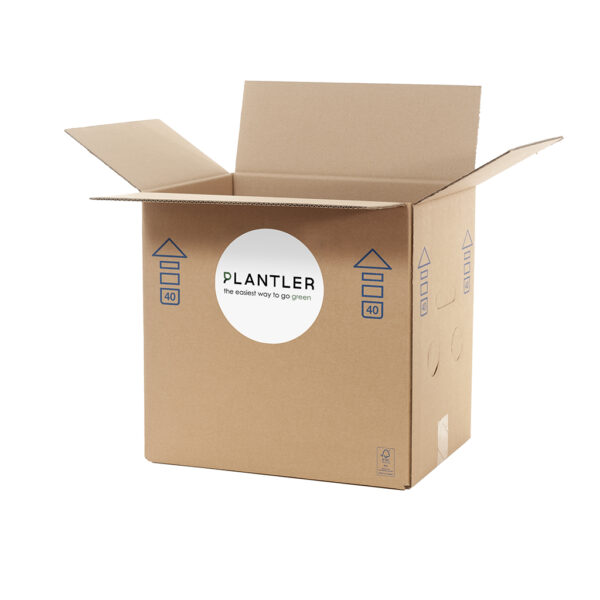 discount plant box